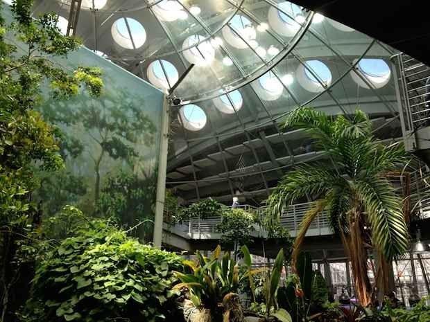 متحف التاريخ الطبيعي سان فرانسيسكو