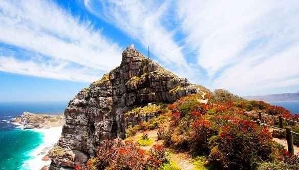 منتزه جبل الطاولة الوطني