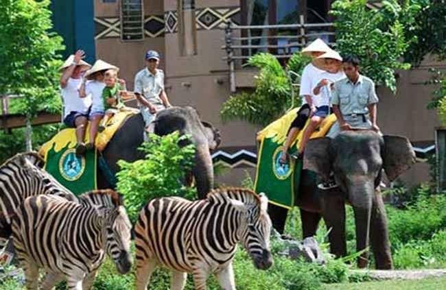 حديقة حيوانات بوكيت