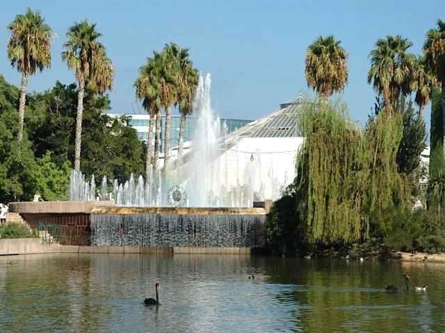 حديقة فونيكس