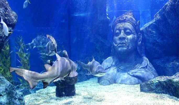سي لايف بانكوك عالم المحيط