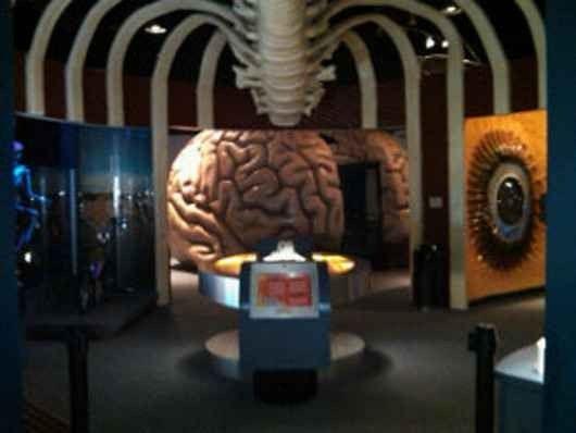 متحف الصحة في هيوستن