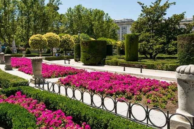 """اليوم الثانى """" الحديقة النباتية الملكية - بلازا مايور مدريد """" .."""