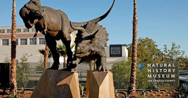 """"""" متحف التاريخ الطبيعى فى لوس أنجلوس Natural History Museum of Los Angeles County """" .."""