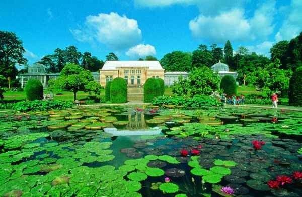 """اليوم الخامس زيارة """" حديقة فيلهيلما للحيوان والنبات """" .."""