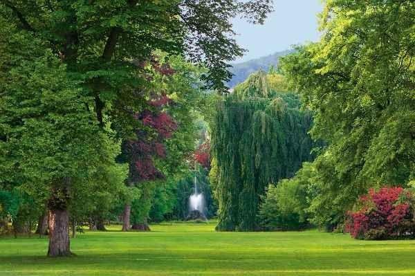 """- اليوم الثانى زيارة """" حديقة روزنشتاين - متحف شتوتغارت """" .."""