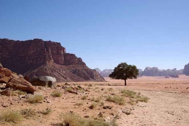 ينبوع لورنس .. منتزهات عائلية في الأردن Jordan