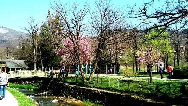 حديقة ربيع البوسنة