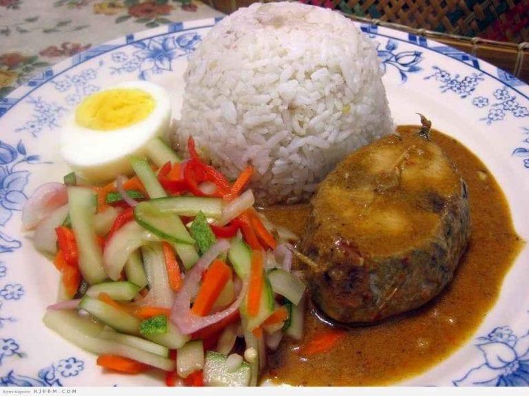 ناسي داغانغ - الأكلات المشهورة في ماليزيا Malaysia
