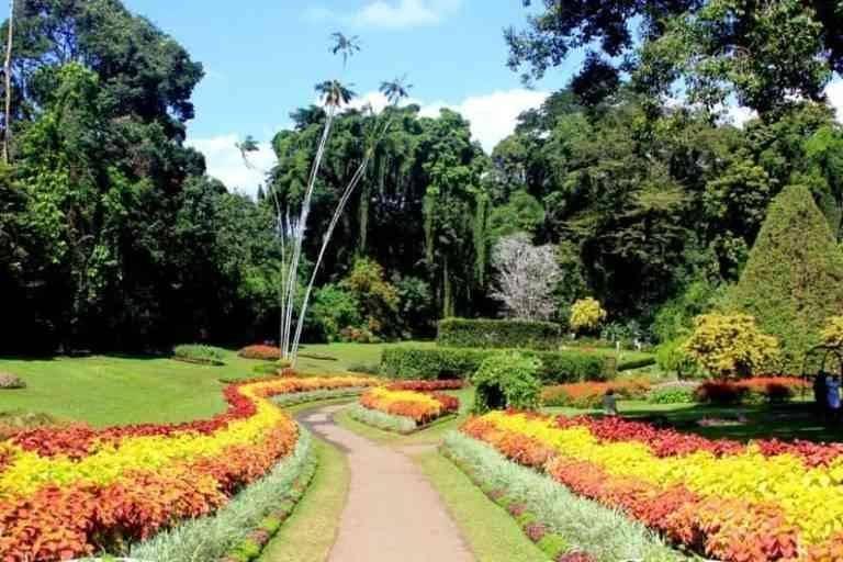 الحدائق النباتية فى لينز
