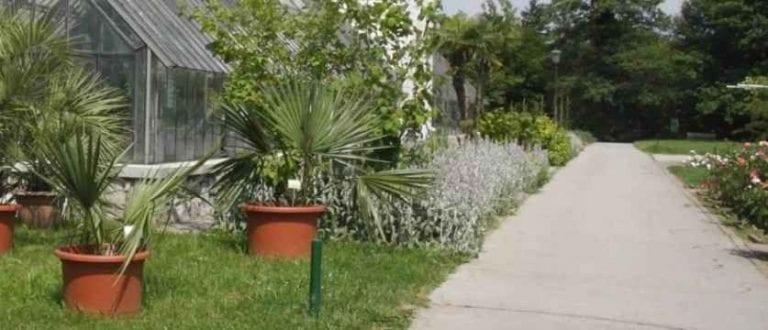 حديقة ليوبليانا النباتية