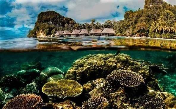 جزيرة بيانيموBianimo Island