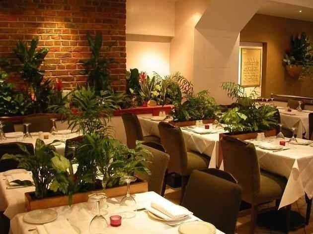مطعم الواحة في لندن