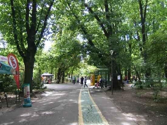 حديقة هيريستراو بوخارست Herastrau Park