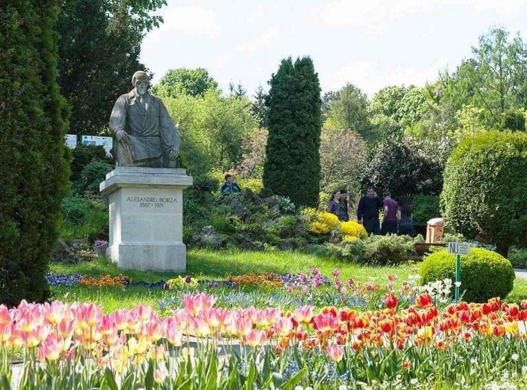 حديقة بوخارست النباتية Bucharest botanical garden