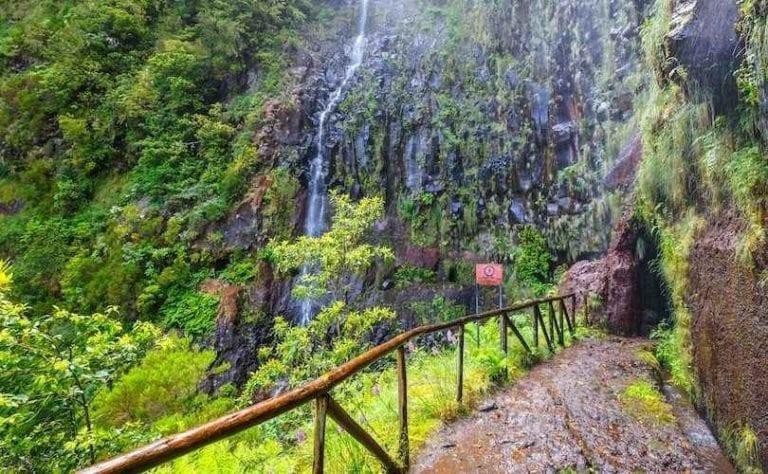 """""""الحديقة النباتية""""..واحدة من أجمل معالم السياحة في جزيرة ماديرا البرتغال..."""