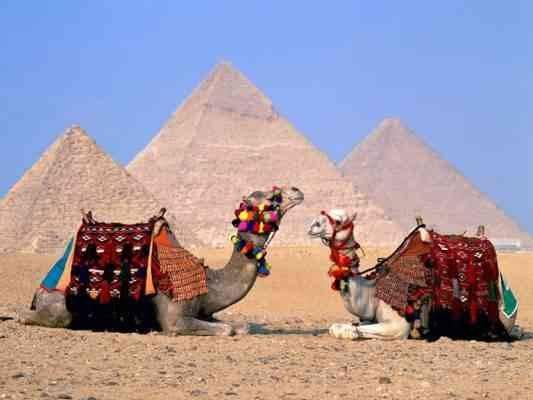 أفضل الأنشطة السياحية فى أهرامات الجيزة ..