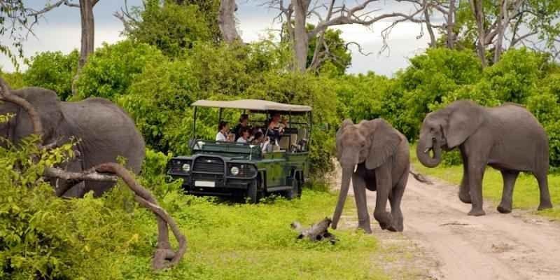 الانشطة السياحية في جنوب افريقيا