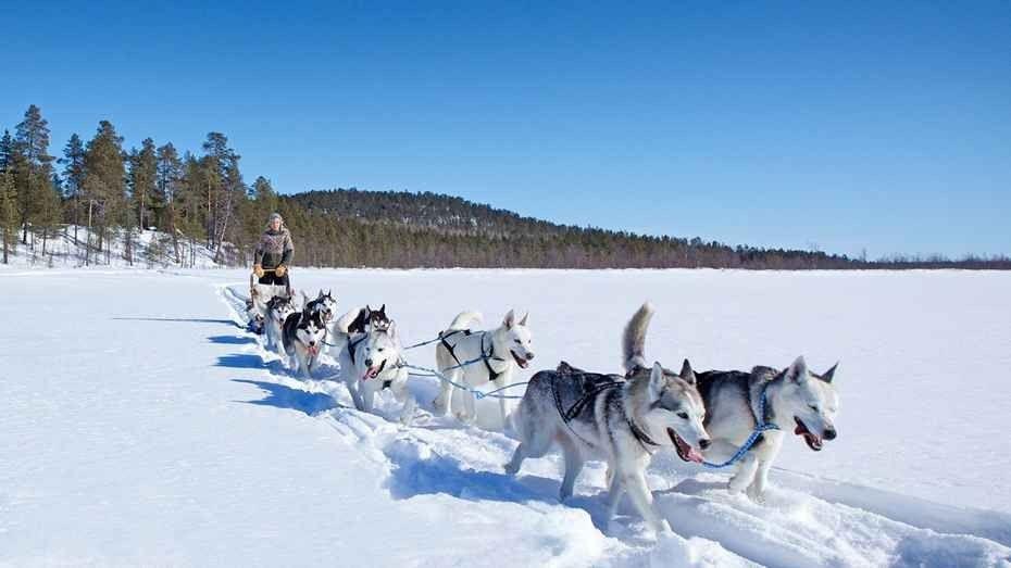 Photo of الأنشطة السياحية في فنلندا :  أجمل 10 نشاطات رائعة