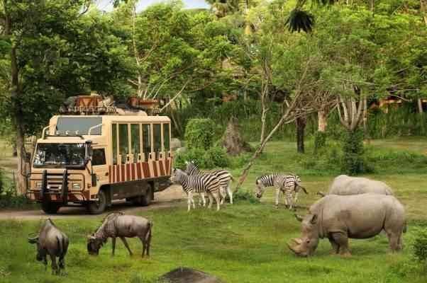 """أجمل الانشطة السياحية في اندونيسيا بحديقة الحيوان """"راغونان"""".."""