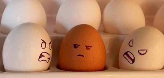 كيفية التعامل مع الناس التي تكرهني
