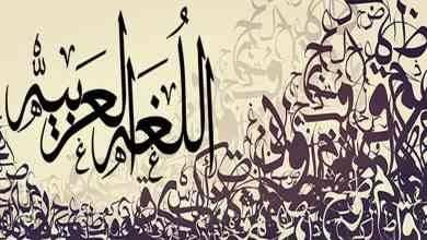 Photo of حقائق عن اللغة العربية .. معلومات سوف تعرفها لأول مرة عن اللغة العربية