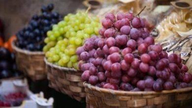صورة فوائد العنب .. تعرف على فوائد العنب لصحة الإنسان والوقاية من العديد من الأمراض