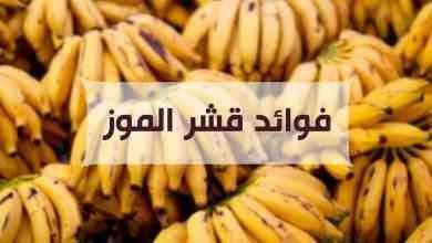 صورة فوائد قشر الموز.. دليلك الكامل للتعرف على فوائد قشر الموز للجسم والصحة العامة