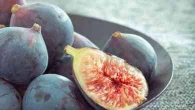 Photo of فوائد قشر التين .. يُعزز من صحة القلب ويُسيطر على ضغط الدم ويحارب السرطان