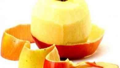 Photo of فوائد قشر التفاح .. يقي الجسم من الإصابة من السرطان ويُساعد على التخسيس