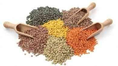 Photo of فوائد العدس .. تعرف على فوائد العدس للقلب والسكر والحفاظ على البشرة
