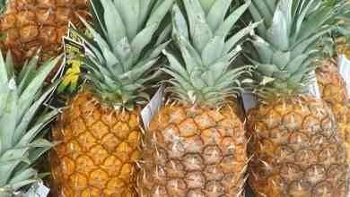 صورة فوائد الاناناس..أهيمة تناول فاكهة الأناناس للصحة