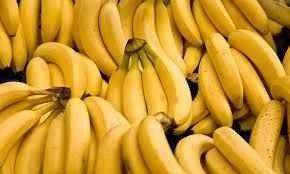 طريقة وراعة الموز