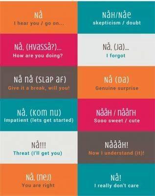 تعلم اللغة الدنماركية - طريقة تعلم اللغة الدنماركية
