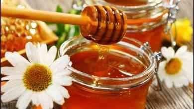 Photo of فوائد العسل الأبيض … إليك مجموعة فوائد مذهلة عن العسل الأبيض وأهميته للجسم