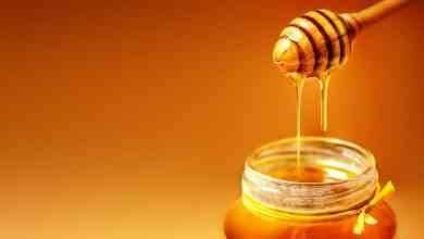 Photo of فوائد العسل الطبيعى على الريق .. ملعقة واحدة على الريق ستعزز صحتك ووظائف جسمك