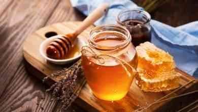 Photo of فوائد العسل للجنس .. دليلك الكامل عن الحياة الجنسية وفوائد العسل للجنس
