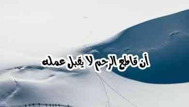 Photo of كيف يكون قطع الرحم .. تعرف على معني مفهوم قطع الرحم وكيف يكون
