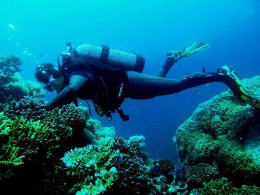 معدات الغوص - مصطلحات الغوص بالإنجليزي
