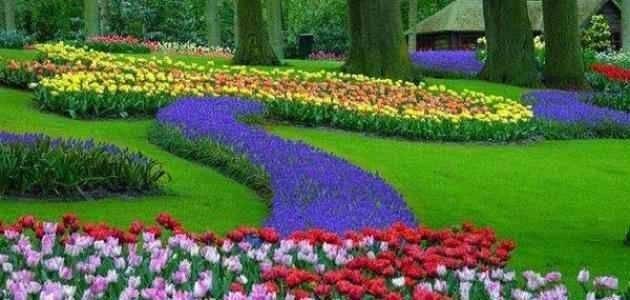 معلومات عن فصل الربيع
