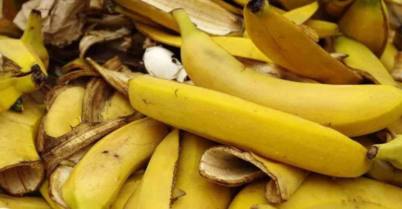 استخدامات قشر الموز