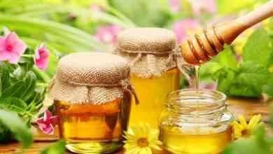Photo of فوائد العسل قبل النوم .. إليك مجموعة فوائد مذهلة عن تناول العسل قبل النوم وتأثيره على العقل