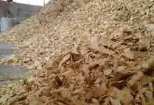 استخدامات نشارة الخشب
