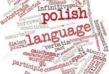 معلومات عن اللغة البولندية