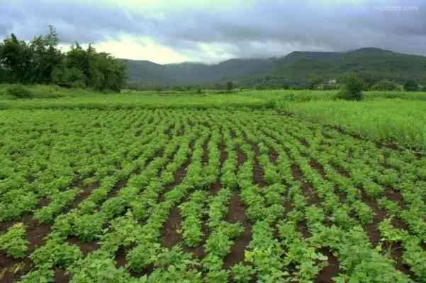 مصطلحات الزراعة عن الأراضي