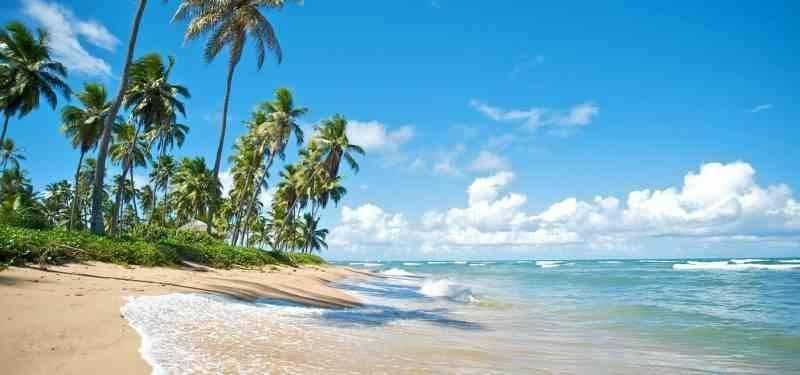 شواطئ البرازيل من أفضل شواطئ العالم