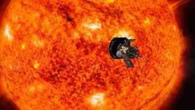 Photo of معلومات عن الشمس .. تعرف على الشمس واهميتها