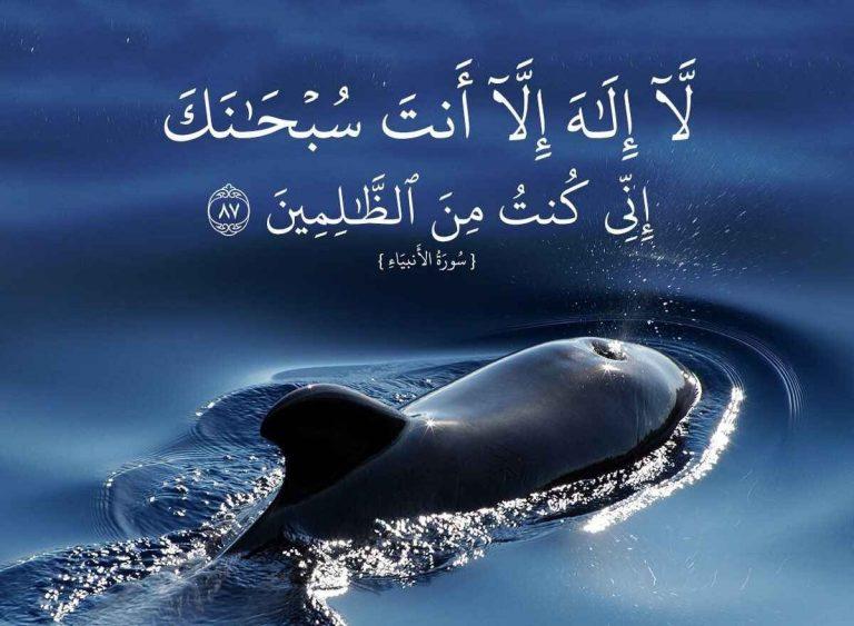 لا اله الا انت سبحانك اني كنت من الظالمين Doa Islam Noble Quran