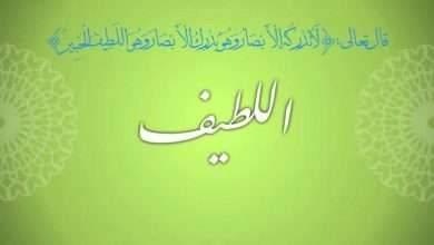 Photo of معنى اسم الله اللطيف.. دليلك الكامل للتعرف على اسم الله اللطيف ومعناه