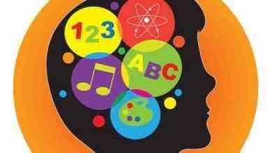 Photo of انواع الذكاء السبعة .. تعرف على أنواع الذكاء السبعة وتطويرها ..